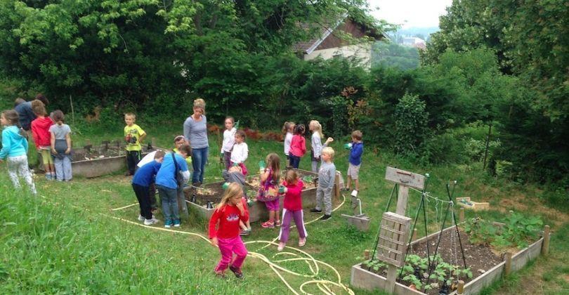 Les élèves de GS/CP au jardin potager